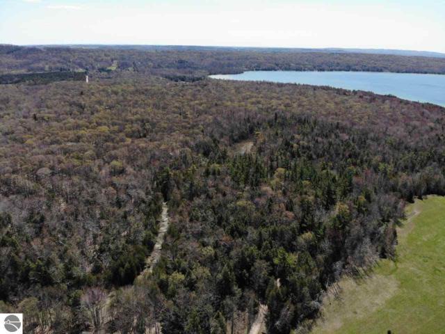 S Micheals Woods Trail, Maple City, MI 49664 (MLS #1865293) :: Boerma Realty, LLC