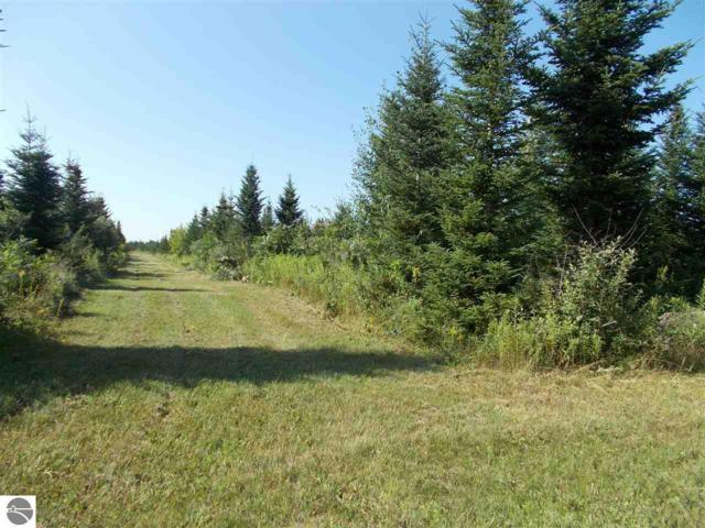 00 Plant Road, Whittemore, MI 48770 (MLS #1865563) :: Boerma Realty, LLC