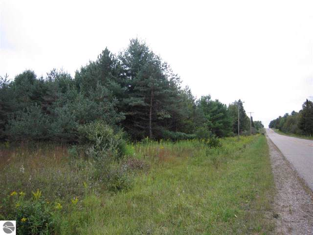 N/A Townline Road, Rose City, MI 48654 (MLS #1867332) :: Team Dakoske | RE/MAX Bayshore