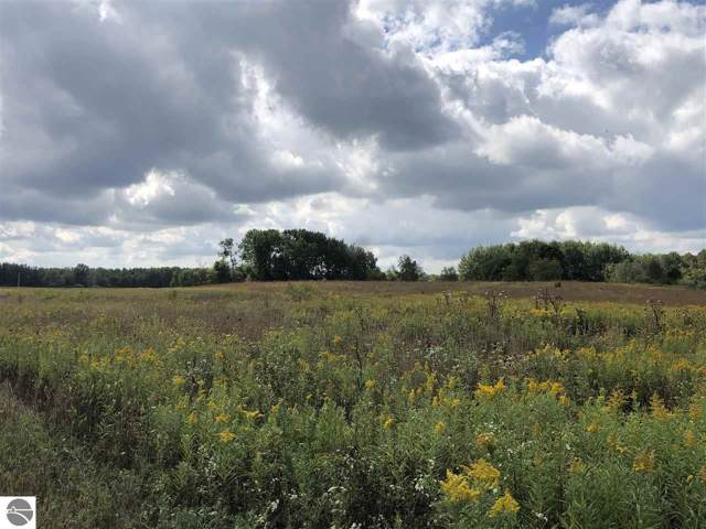 TBD S Littlefield Road, Weidman, MI 48893 (MLS #1867507) :: Boerma Realty, LLC