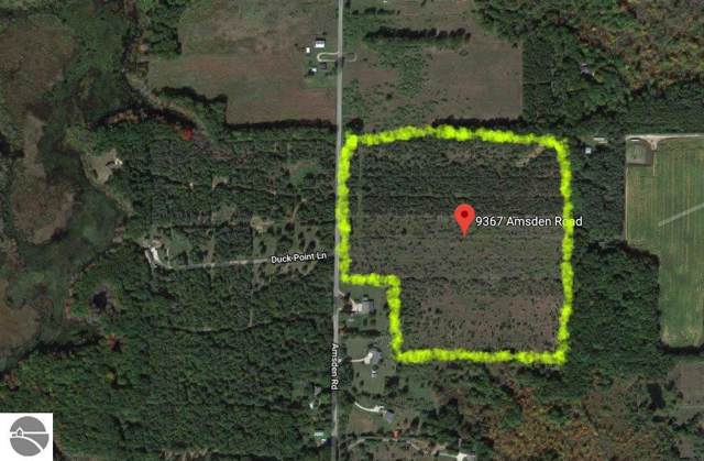 9367 Amsden Road, Fenwick, MI 48834 (MLS #1867913) :: Boerma Realty, LLC