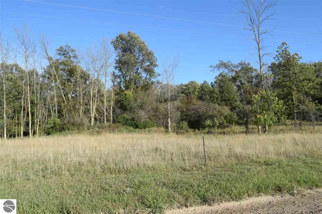 TBD N Nottawa Road, Mt Pleasant, MI 48858 (MLS #1867999) :: Boerma Realty, LLC