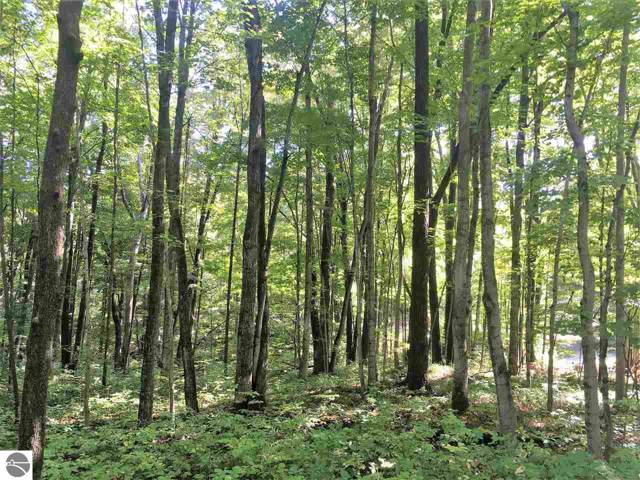 LOT 70 Birch View Trail, Lake Ann, MI 49650 (MLS #1868193) :: Team Dakoske | RE/MAX Bayshore