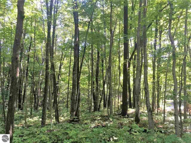 LOT 71 Birch View Trail, Lake Ann, MI 49650 (MLS #1868194) :: Team Dakoske   RE/MAX Bayshore