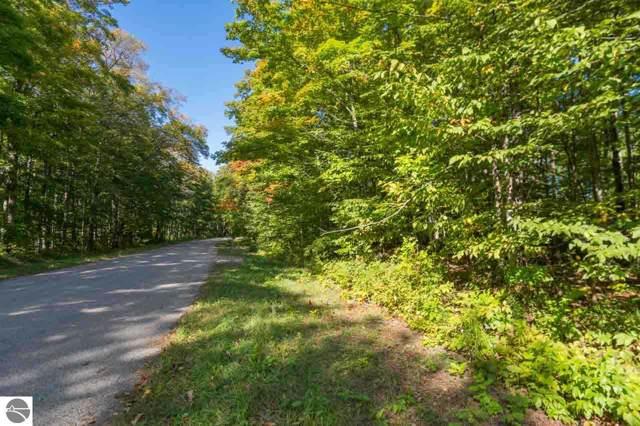Lot 3 S Fairway Drive, Cedar, MI 49621 (MLS #1868363) :: Team Dakoske | RE/MAX Bayshore