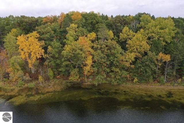 P4 Wild Cherry Lane, Hale, MI 48739 (MLS #1868609) :: Michigan LifeStyle Homes Group