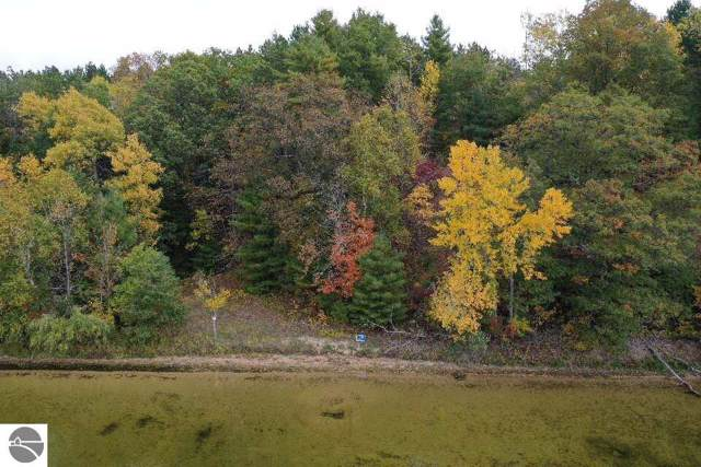 P9 Wild Cherry Lane, Hale, MI 48739 (MLS #1868637) :: Michigan LifeStyle Homes Group
