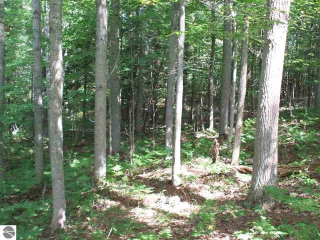 0 White Pine Drive, Cadillac, MI 49601 (MLS #1869060) :: Michigan LifeStyle Homes Group