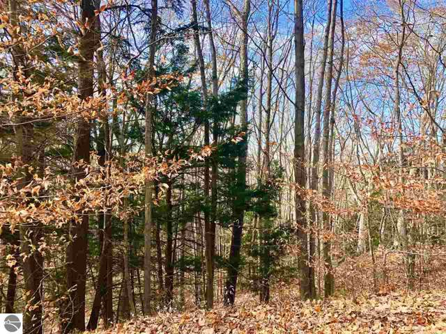 000 Tree Tops Lane, Frankfort, MI 49635 (MLS #1870088) :: Team Dakoske | RE/MAX Bayshore