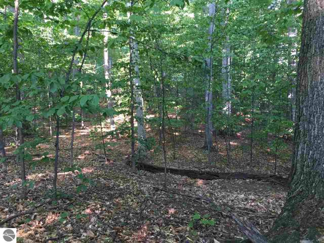S Bay View Trail, Suttons Bay, MI 49682 (MLS #1871353) :: Michigan LifeStyle Homes Group
