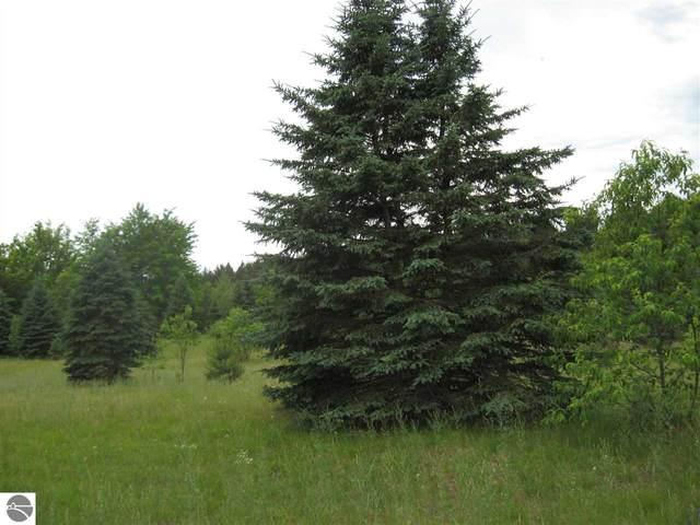 000 SW Farm Lane, South Boardman, MI 49680 (MLS #1871729) :: Michigan LifeStyle Homes Group