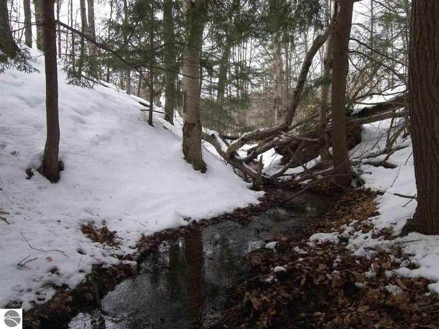 00 S Beaver Pond Road, Empire, MI 49630 (MLS #1872111) :: CENTURY 21 Northland
