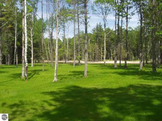24 Deer Park, Glen Arbor, MI 49636 (MLS #1872116) :: CENTURY 21 Northland