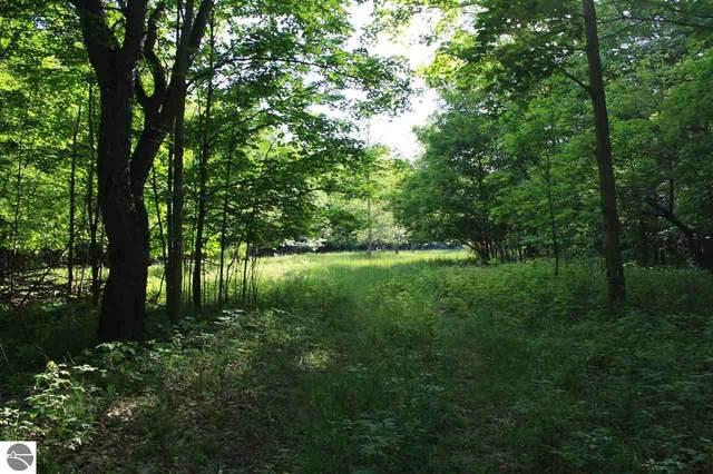 000 Drew Road, Empire, MI 49630 (MLS #1872175) :: CENTURY 21 Northland