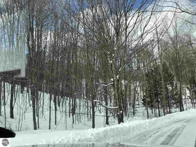 River Road, Frankfort, MI 49635 (MLS #1872251) :: Boerma Realty, LLC