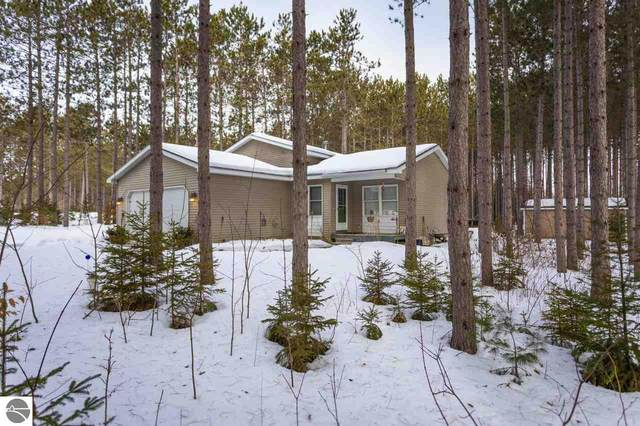19980 Pine Woods Drive, Lake Ann, MI 49650 (MLS #1872280) :: Team Dakoske | RE/MAX Bayshore