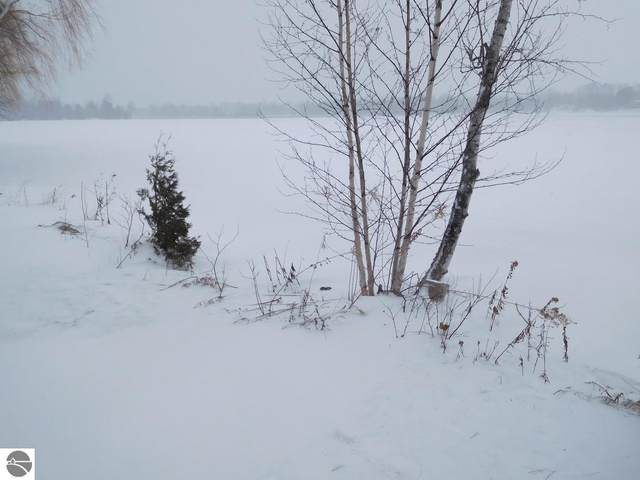 823 Millers Park, Elk Rapids, MI 49629 (MLS #1872393) :: CENTURY 21 Northland
