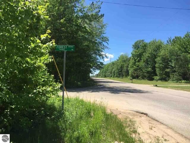 Lot 1 NE Plum Valley Road, Rapid City, MI 49676 (MLS #1873031) :: Team Dakoske | RE/MAX Bayshore