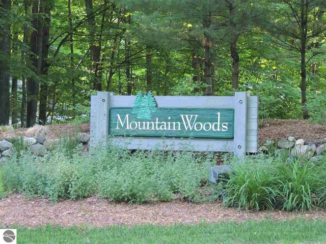 0 Beech Tree Trail, Thompsonville, MI 49683 (MLS #1873541) :: Brick & Corbett