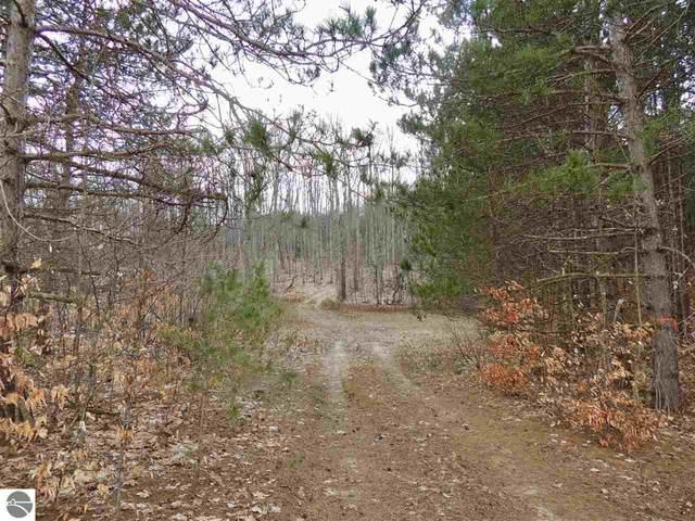 000 Whitetail Woods Drive, Lake Ann, MI 49650 (MLS #1873635) :: Team Dakoske | RE/MAX Bayshore