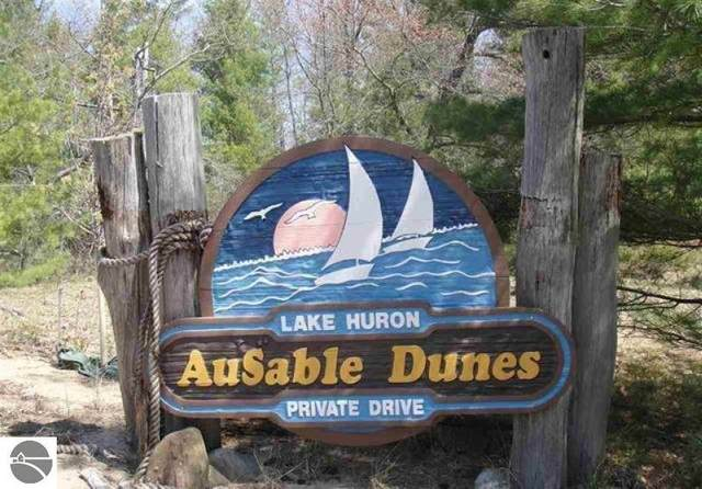 000 Ausable Dunes Trail, East Tawas, MI 48730 (MLS #1873648) :: Michigan LifeStyle Homes Group