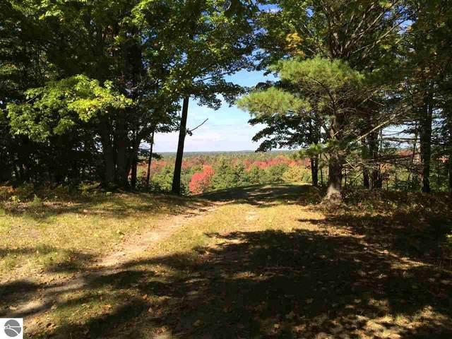 Bald Eagles View, South Boardman, MI 49680 (MLS #1873662) :: Boerma Realty, LLC