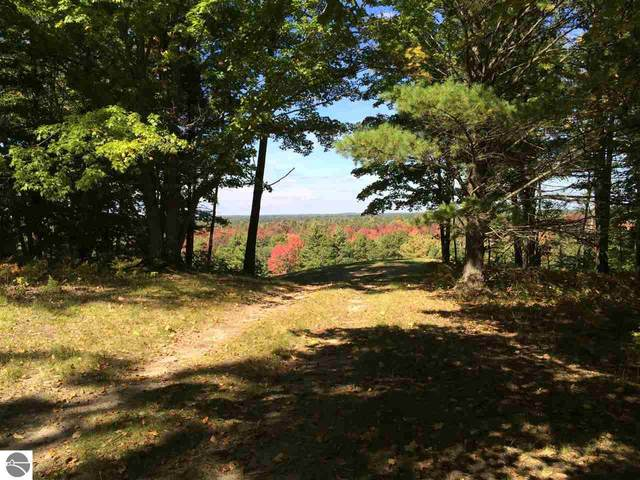 Bald Eagles View, South Boardman, MI 49680 (MLS #1873663) :: Brick & Corbett