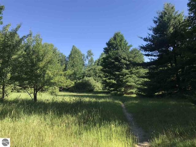 000 Bartlett Road, Williamsburg, MI 49690 (MLS #1873796) :: Brick & Corbett