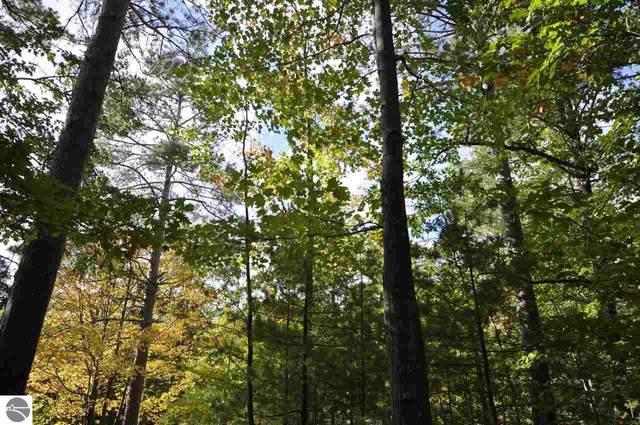 13 Skippers Wood, Glen Arbor, MI 49636 (MLS #1874955) :: CENTURY 21 Northland