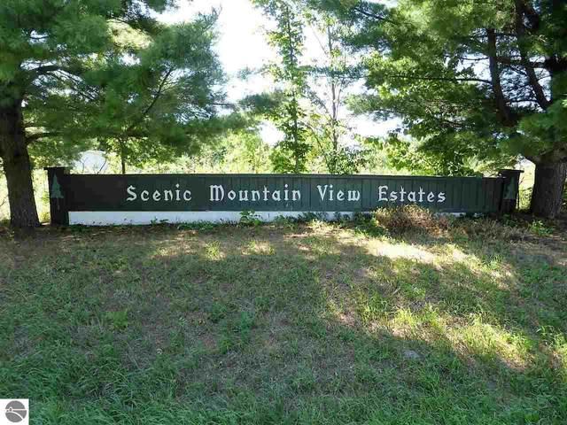 Lot 72 S Bay Bluffs Drive, Cedar, MI 49621 (MLS #1874964) :: CENTURY 21 Northland