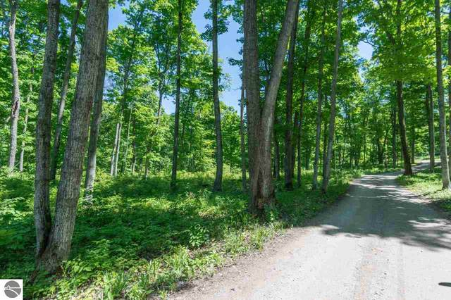 3700 W Cheney Woods Trail, Maple City, MI 49664 (MLS #1875391) :: Team Dakoske | RE/MAX Bayshore