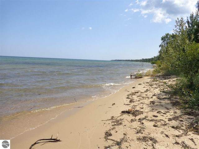 Old Shore Road, Harrisville, MI 48740 (MLS #1875601) :: Michigan LifeStyle Homes Group