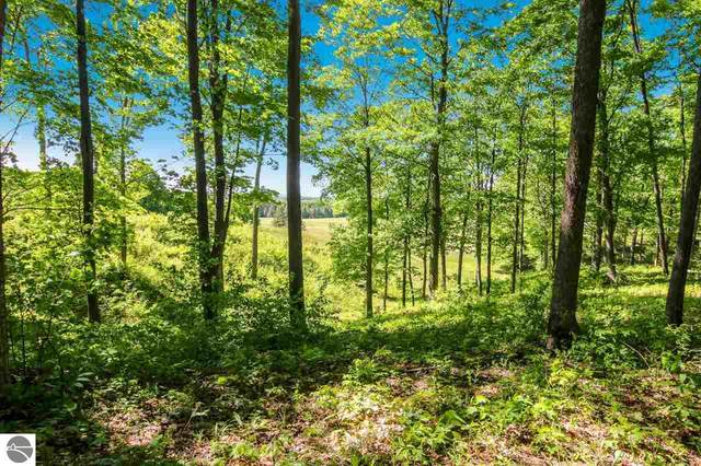 0011 Heather Ridge Trail, Beulah, MI 49617 (MLS #1876303) :: Michigan LifeStyle Homes Group