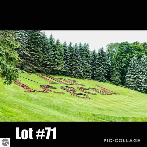 Lot 71 Legend Trail, Bellaire, MI 49615 (MLS #1876598) :: Boerma Realty, LLC