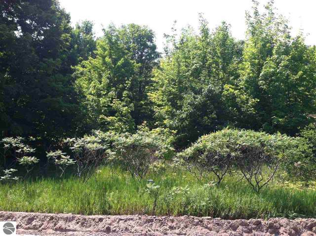 Lot 28 S Sugar Loaf Mountain Road, Maple City, MI 49664 (MLS #1876743) :: Brick & Corbett