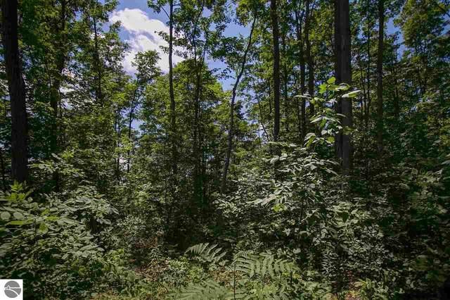 8207 E Boca Vista Trail, Traverse City, MI 49684 (MLS #1876832) :: Team Dakoske | RE/MAX Bayshore