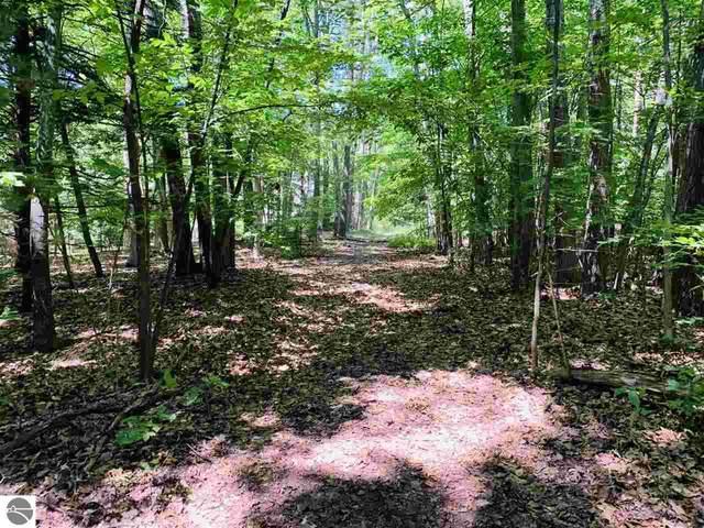 343 E Juniper Trail, Leland, MI 49654 (MLS #1876846) :: Brick & Corbett