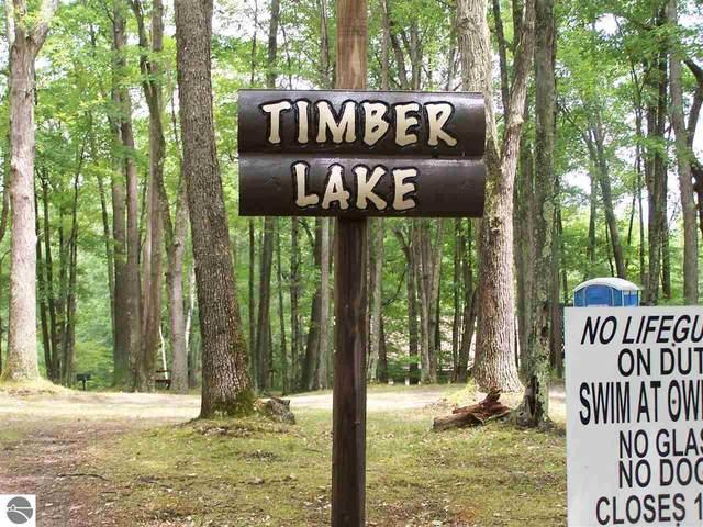 TBD Elm Run, Farwell, MI 48622 (MLS #1877465) :: Michigan LifeStyle Homes Group