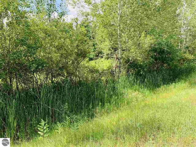 TBD S Wise Road, Shepherd, MI 48883 (MLS #1877644) :: CENTURY 21 Northland