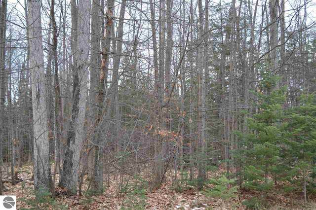 Lot 21 Ottawa Trail, Kewadin, MI 49648 (MLS #1877837) :: CENTURY 21 Northland