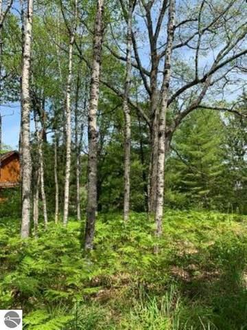 B14b Mccollum Lake Road, Curran, MI 48621 (MLS #1878127) :: Team Dakoske | RE/MAX Bayshore