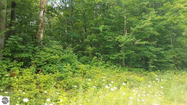 Lot 21 Acorn Ridge Trail, Beulah, MI 49617 (MLS #1878256) :: Michigan LifeStyle Homes Group