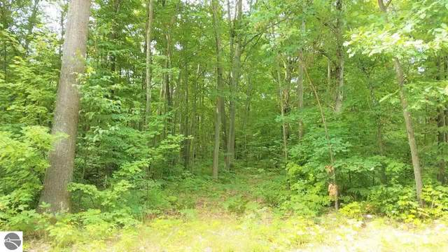 Lot 22 Acorn Ridge Trail, Beulah, MI 49617 (MLS #1878259) :: Michigan LifeStyle Homes Group