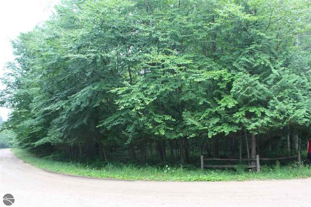 00 Old Grade Road, Thompsonville, MI 49683 (MLS #1878528) :: Brick & Corbett