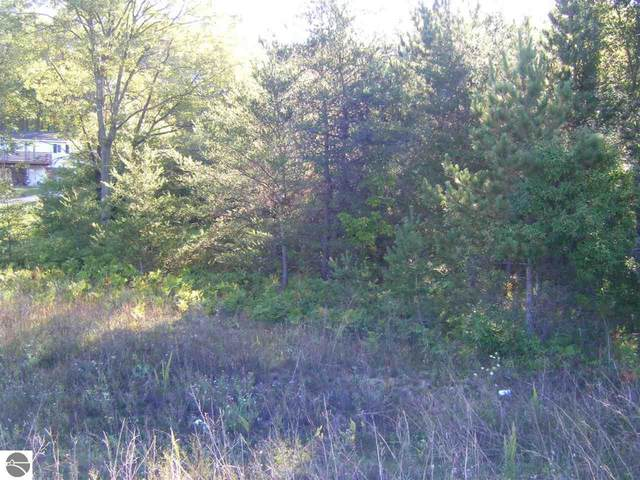 000 Old Us Hwy 131, Manton, MI 49663 (MLS #1879051) :: Michigan LifeStyle Homes Group