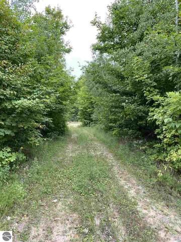 8353 SE Campbell Road, Fife Lake, MI 49633 (MLS #1879404) :: CENTURY 21 Northland