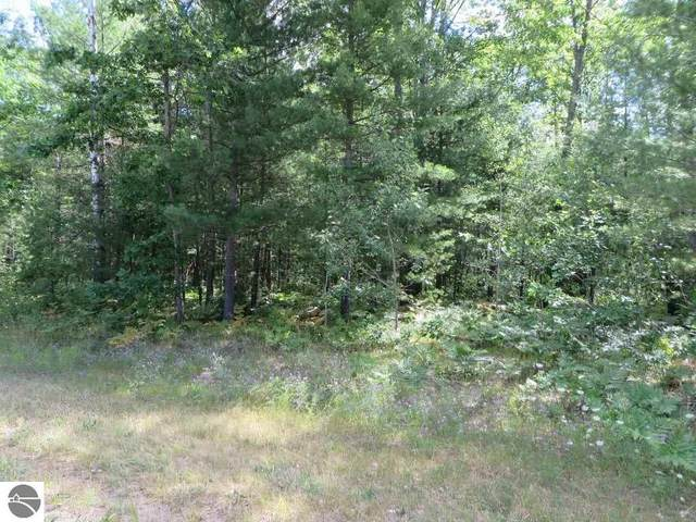 2180 NE Driftwood, Kalkaska, MI 49646 (MLS #1879417) :: Michigan LifeStyle Homes Group