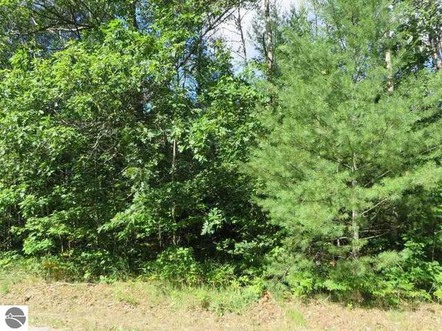 2143 E Log Lake Road, Kalkaska, MI 49646 (MLS #1879418) :: Boerma Realty, LLC
