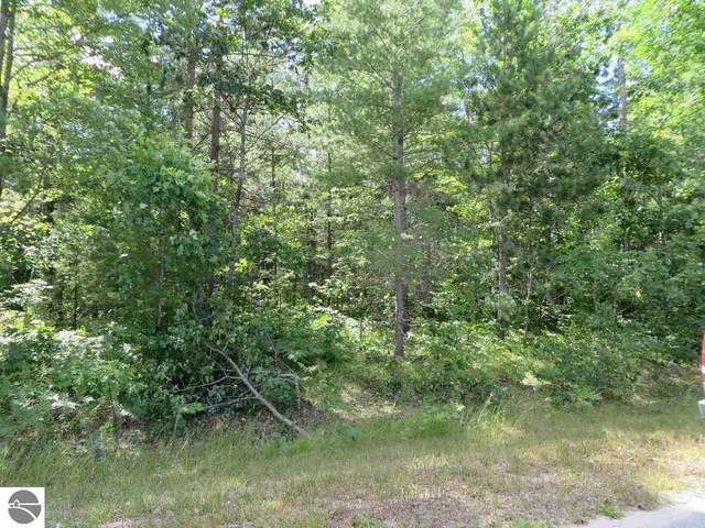 2060 NE Driftwood, Kalkaska, MI 49646 (MLS #1879422) :: Michigan LifeStyle Homes Group