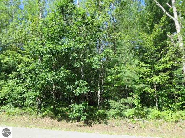 2065 E Log Lake Road, Kalkaska, MI 49646 (MLS #1879424) :: Boerma Realty, LLC